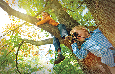 Boys-Playing-In-Tree