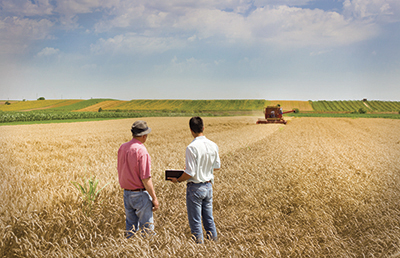 Peasant and business man talking on wheat field during harvesting